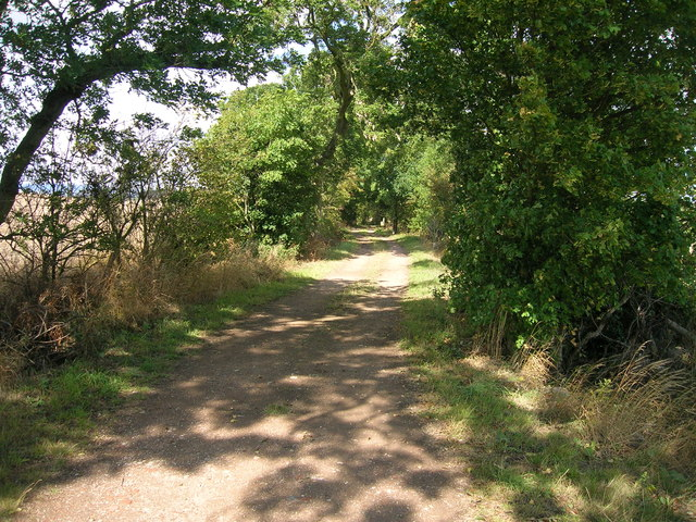 Stoket Lane (track)