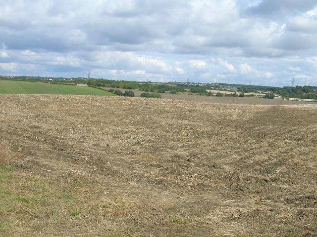 Farmland off Stoket Lane