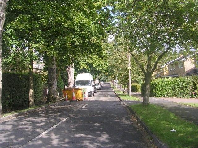 Kirklands Avenue - Kirklands Lane