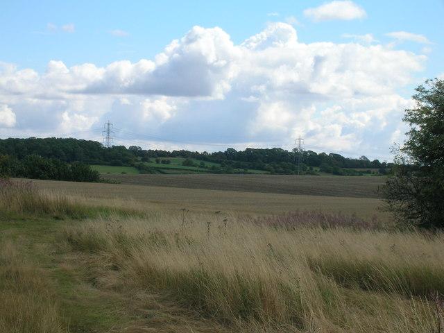 Farmland, Cumwell Fields