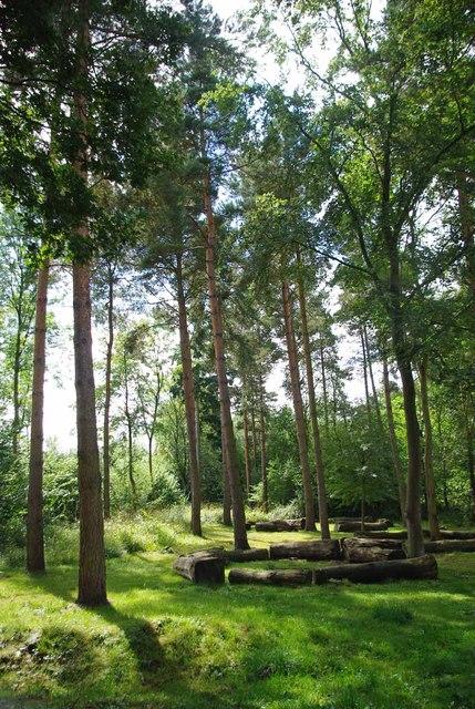 Broak's Wood