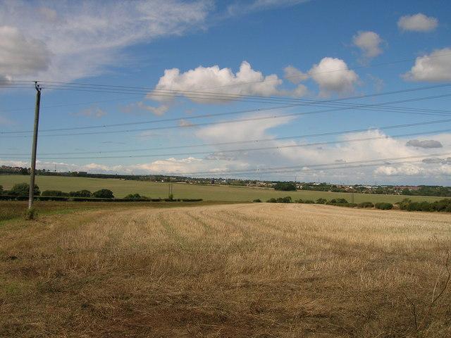 Farmland near Carr