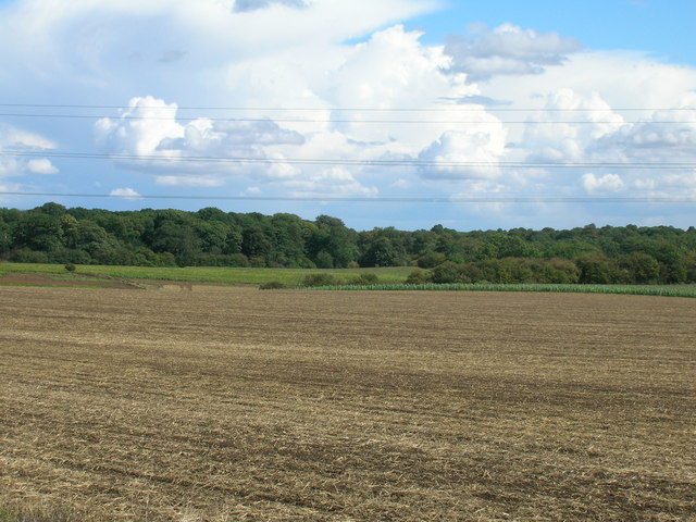 Farmland off Abbey Lane
