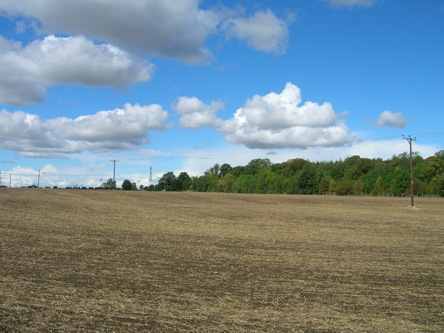 Farmland off Gypsy Lane