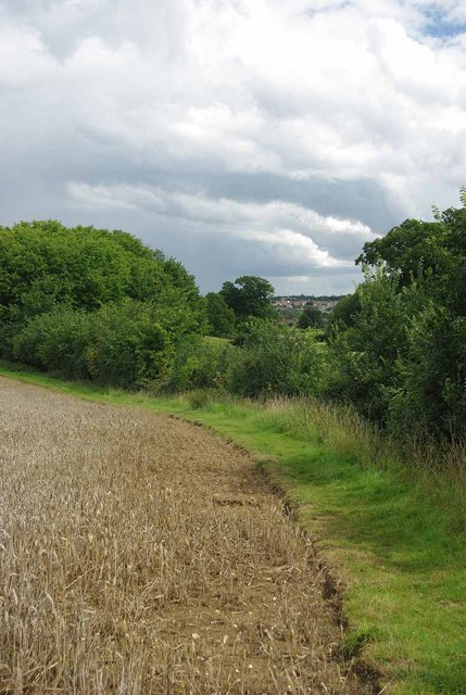 Towards Halstead