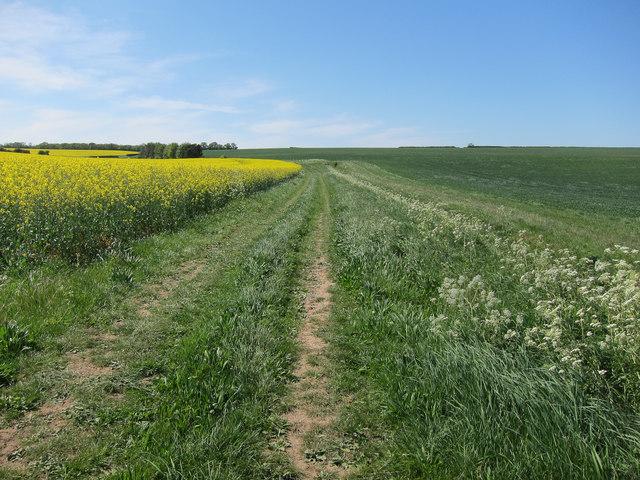 Farmland track