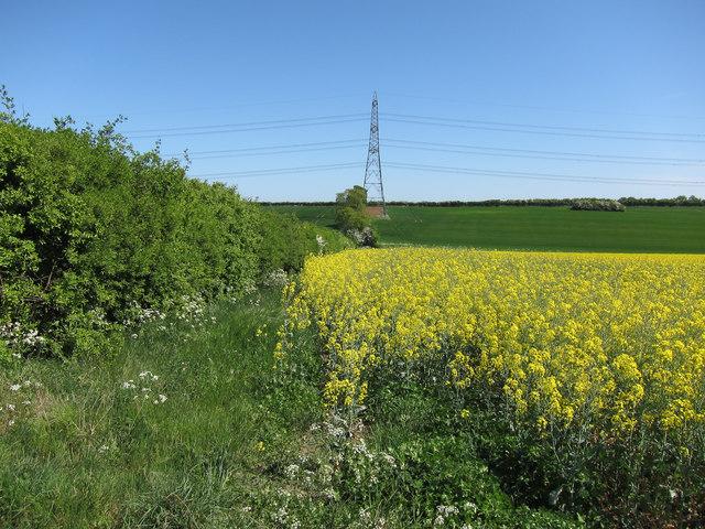 Pylon south-west of Linton