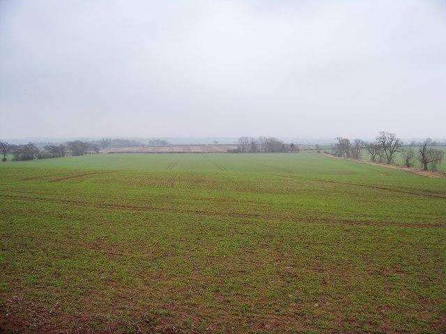 Winter Farmland Scene Near Eccles Tofts