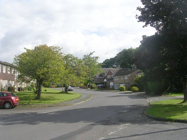 Hoyle Court Road - viewed from Hoyle Court Drive