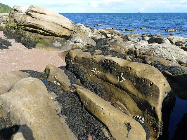 Foreshore rocks near Eathie