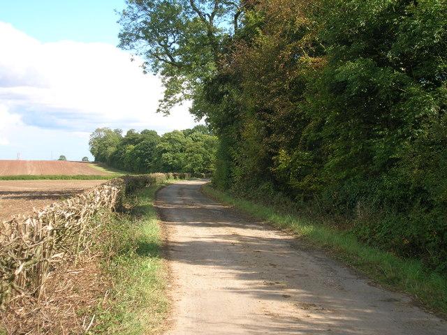 Sandbeck Lane (track)
