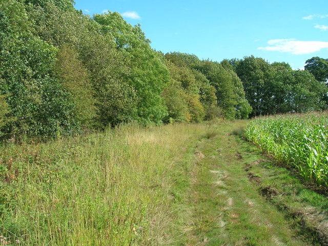 Farm track off Sandbeck Lane