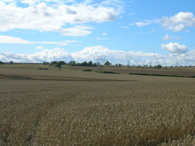 Farmland of Grange Lane