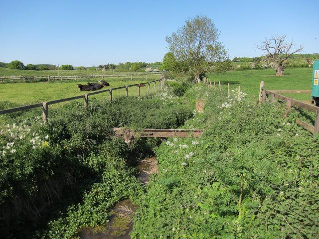 Stream by Newnham Hall Farm