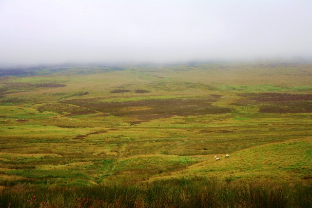 Moorland by Badyo