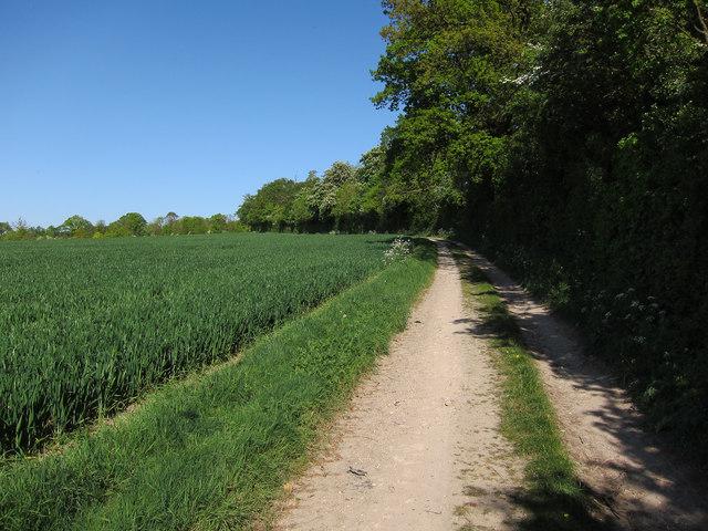 Bridle way near Waltons