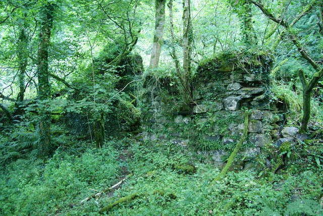 The remains of a house in Coed Tregynon