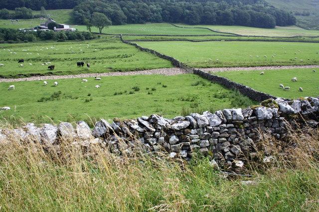 Braida Garth farm and wood, Kingsdale