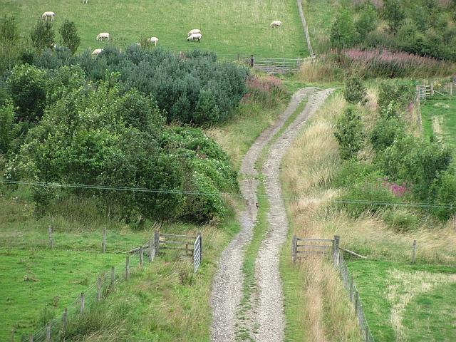 Track, Kilbucho