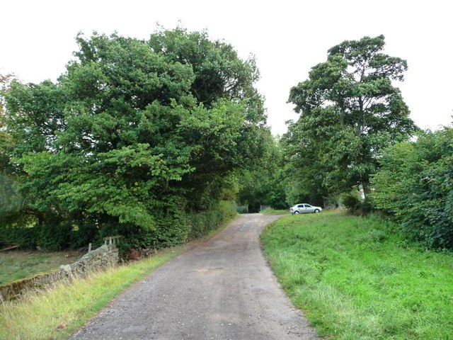 Bilham Road turning into a footpath
