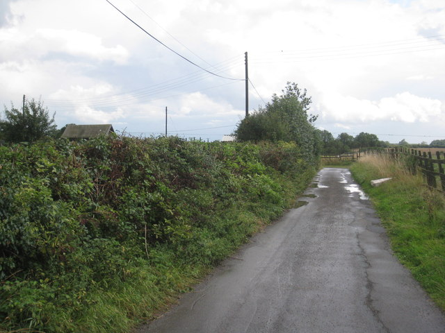 The Lane to East End Farm (2)