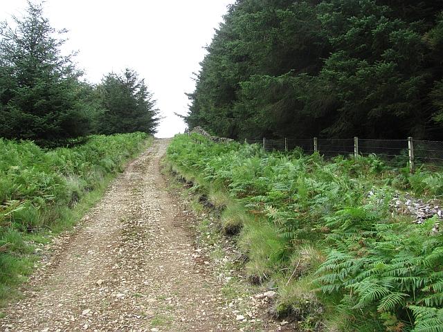 Track, Preston Hill