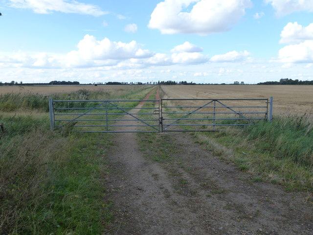 Farm track on Middle Knarr Fen near Thorney