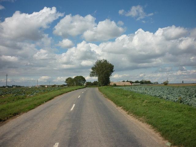 Eaudike Road, towards Eaudike Quadring