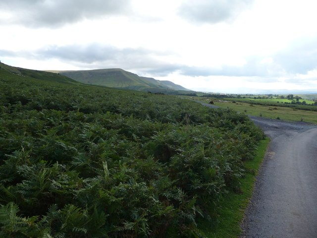 Lane and track near Twmpa in the Black Mountains