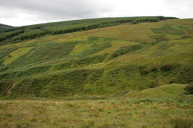 Rough grazing on Auchendona Hill