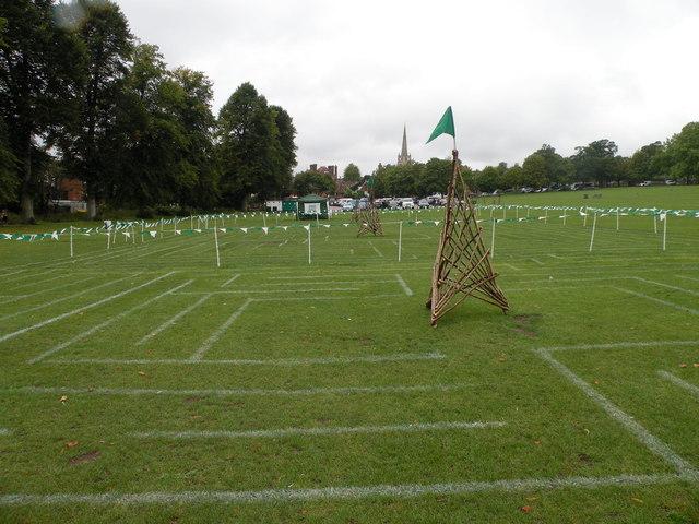 Saffron Walden Maze Festival 2011