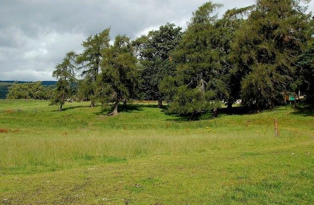 Farmland Near Inverdruie