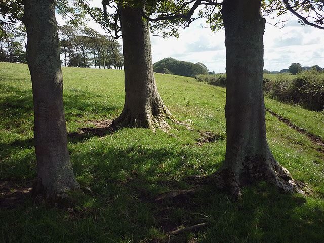The footpath from Cockerham to Little Crimbles