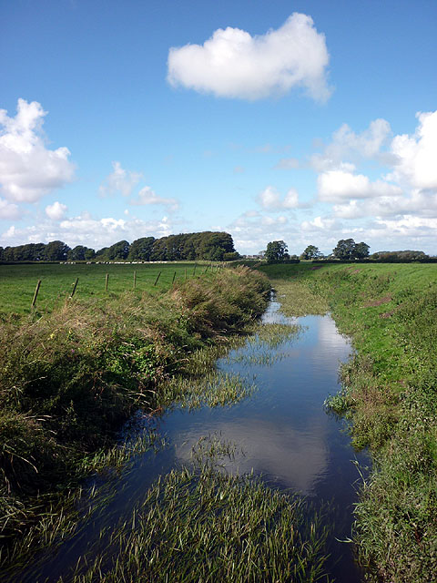 The River Cocker at Little Crimbles