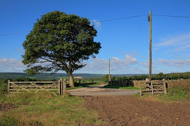 Approaching Gowland Lane