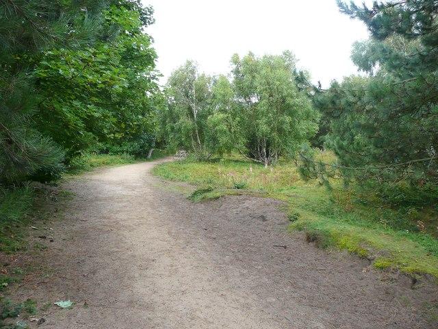 The Sefton Coastal Path, Formby