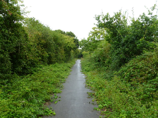 Lower Pennington, Iley Lane