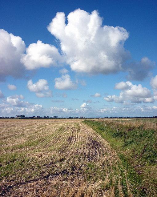 Stubble field on Cockerham Moss