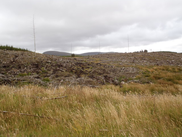 Looking towards the Rig of Stroan, Glentrool Forest