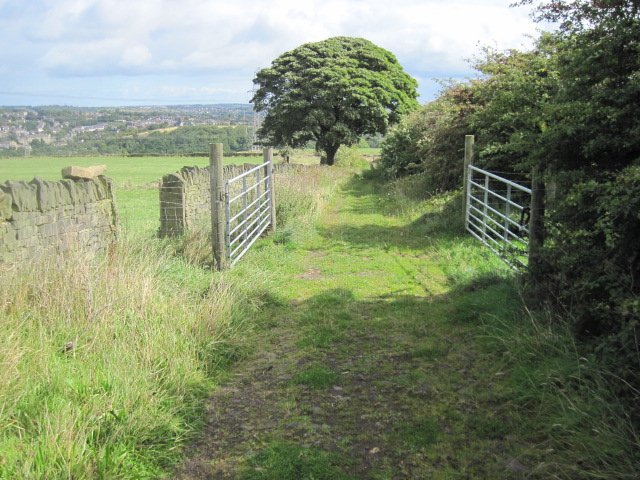 Footpath towards Sunnybank Lane