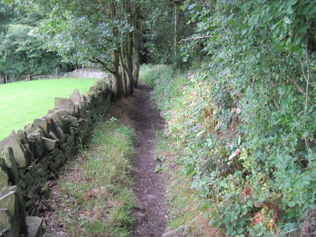 Footpath near Binns Wood