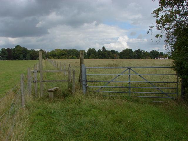 Footpath, Sutton Green