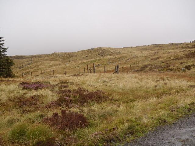 Fence junction below Bennan Hill