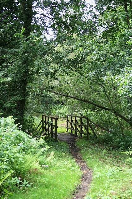 Bridle bridge on Arbrook Common