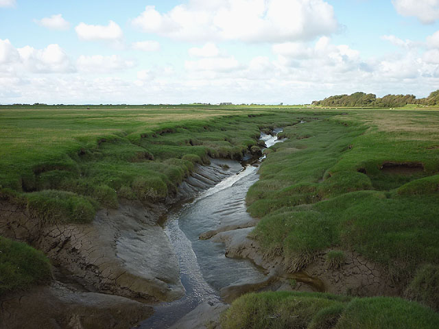 Tidal channel off Pattys Farm