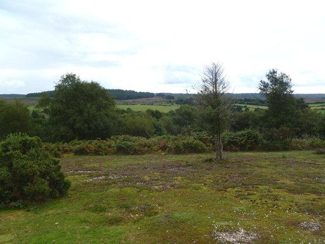 Abbots Well, view