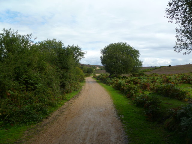 Abbots Well, cycle track