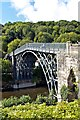 SJ6703 : Ironbridge, View from below village : Week 34