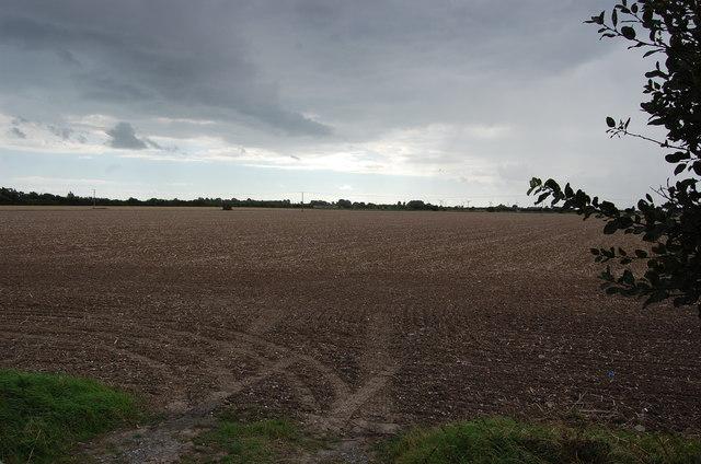 Harvested field near Rheewall Farm