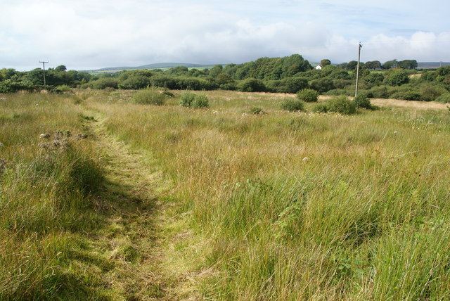 Footpath over the marsh